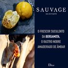 Sauvage-EDT-Ingredients-Board-PT